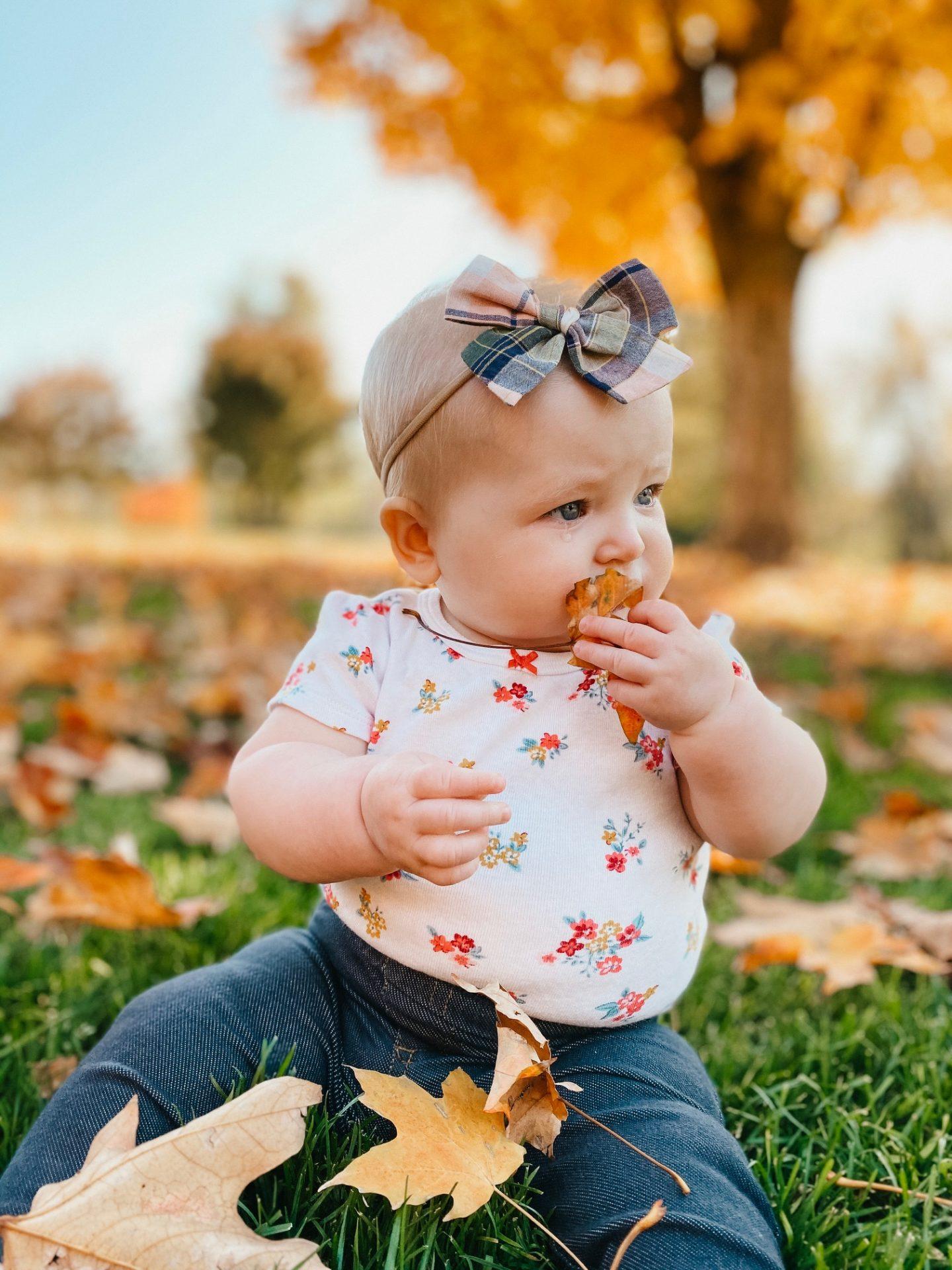 baby girl fall photos