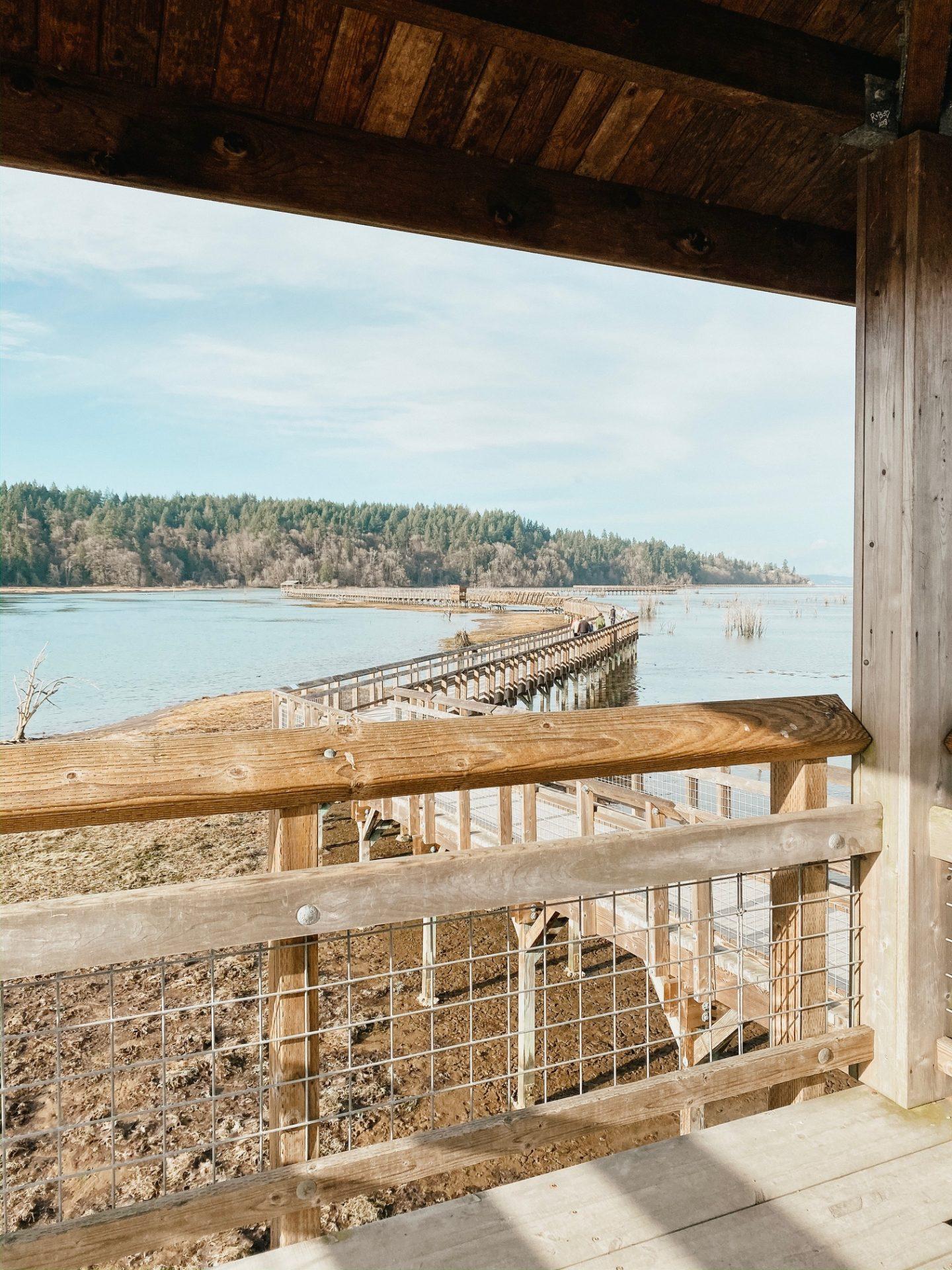 boardwalk nisqually wildlife refuge