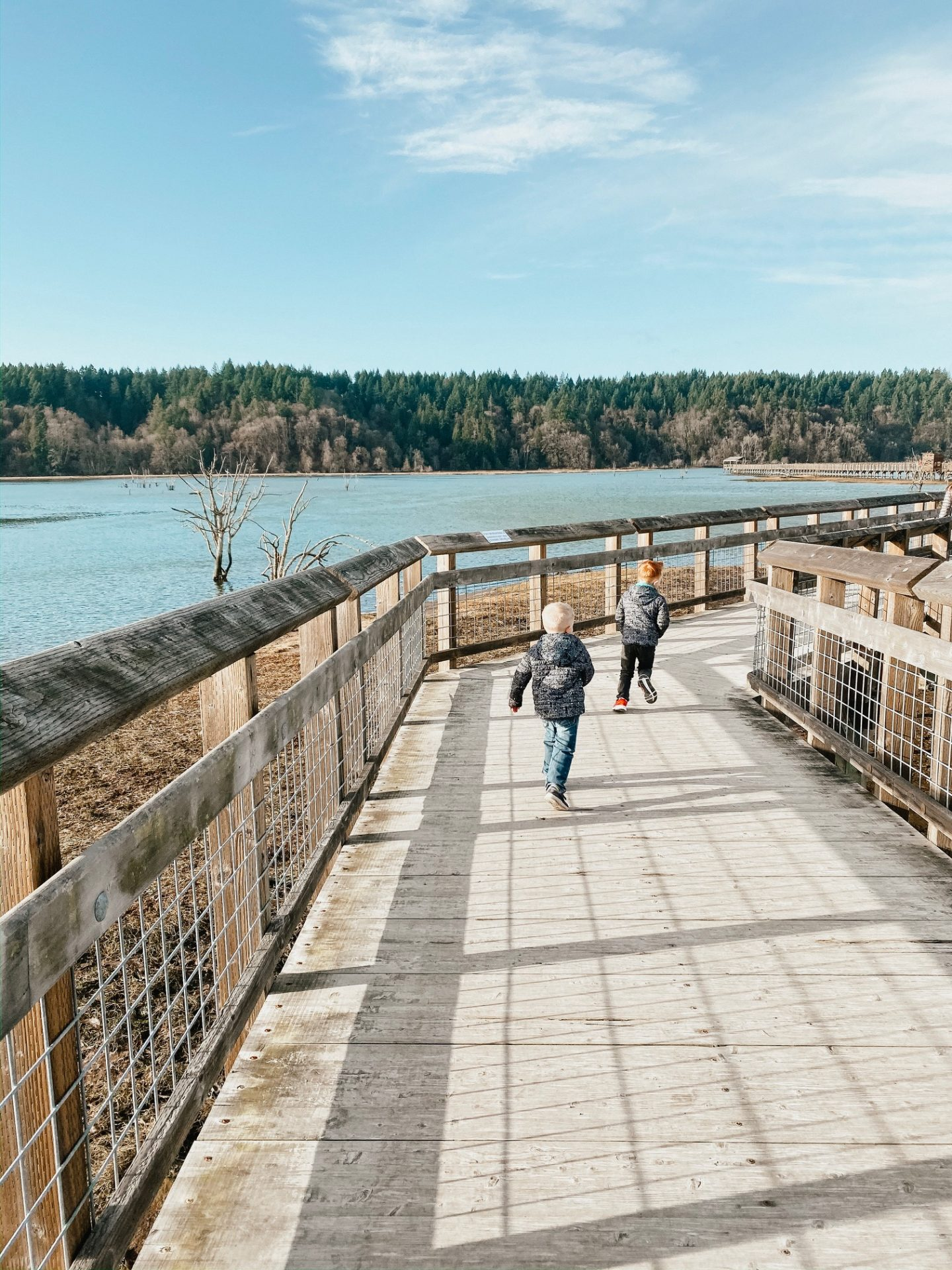 nisqually boardwalk closures