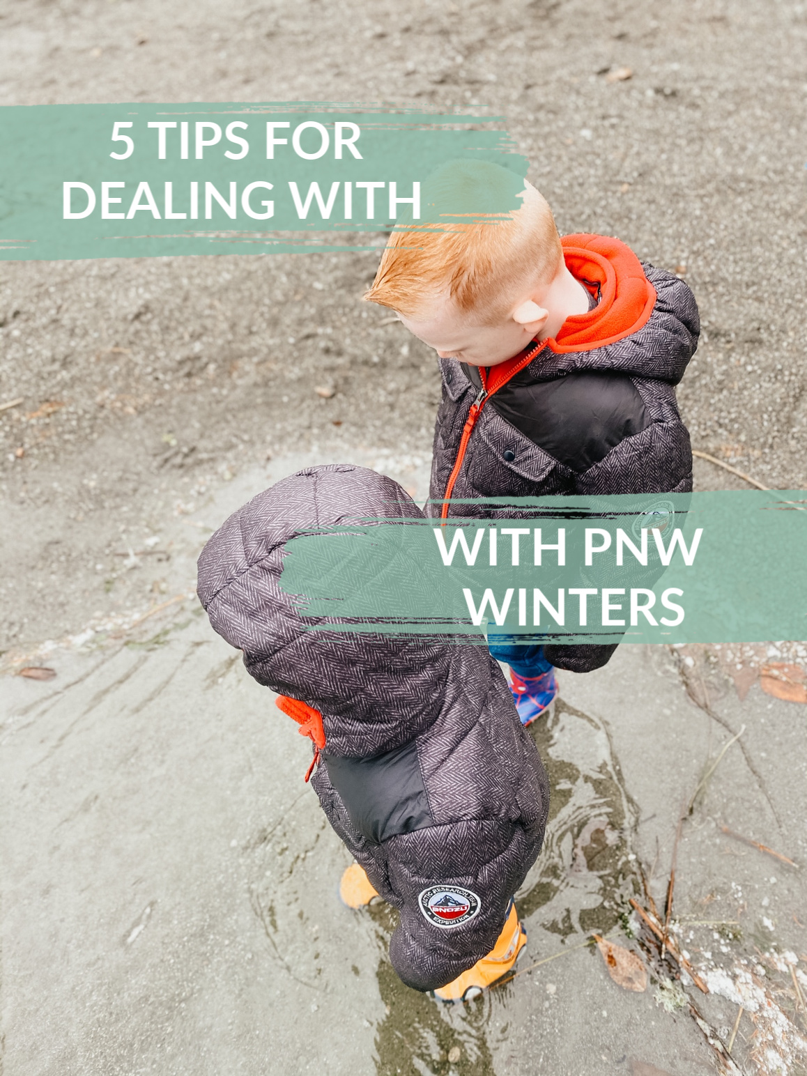 5 tips for dealing with pnw winters
