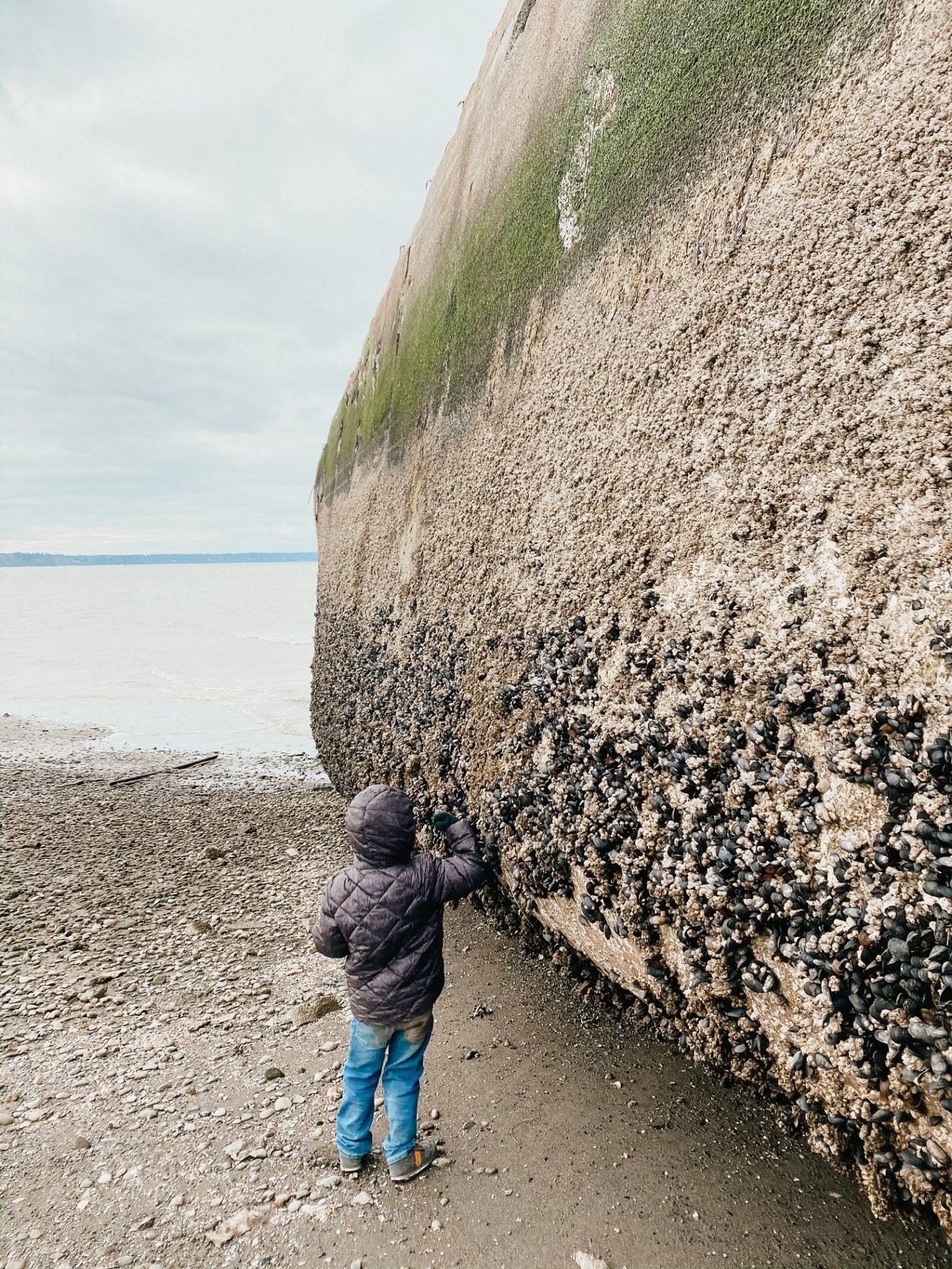 exploring dupont shipwreck