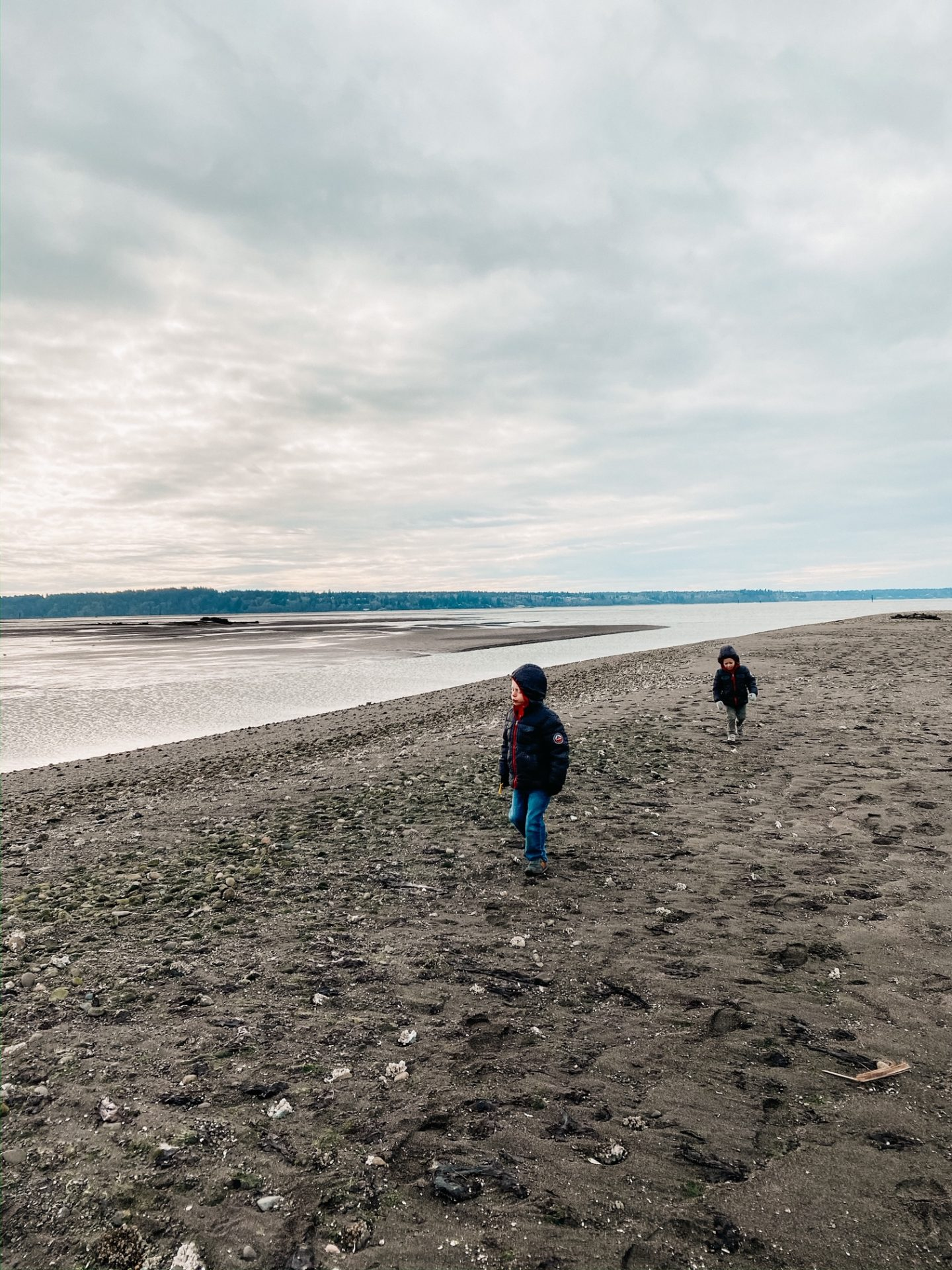 nisqually beach