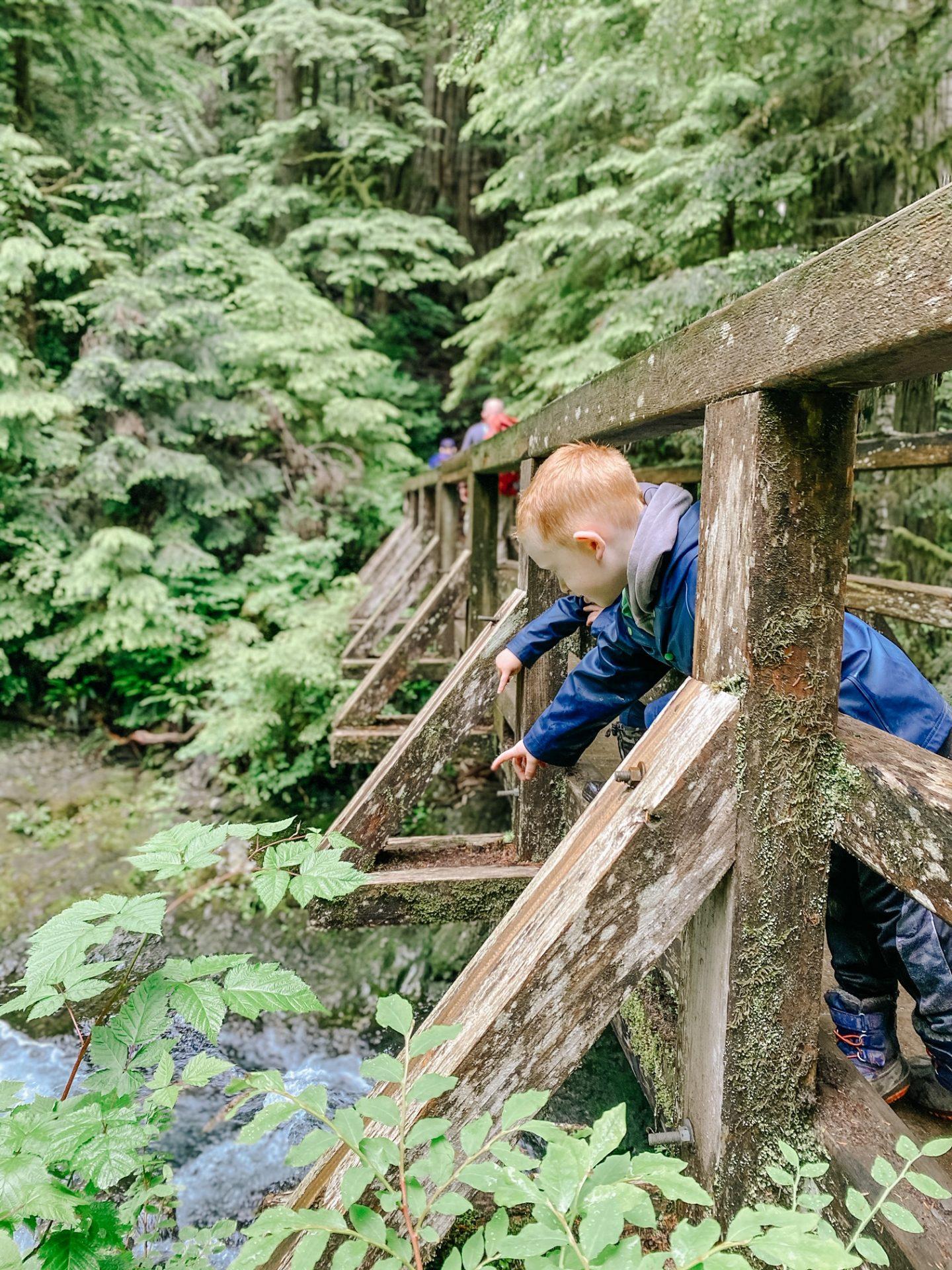 bridge hikes