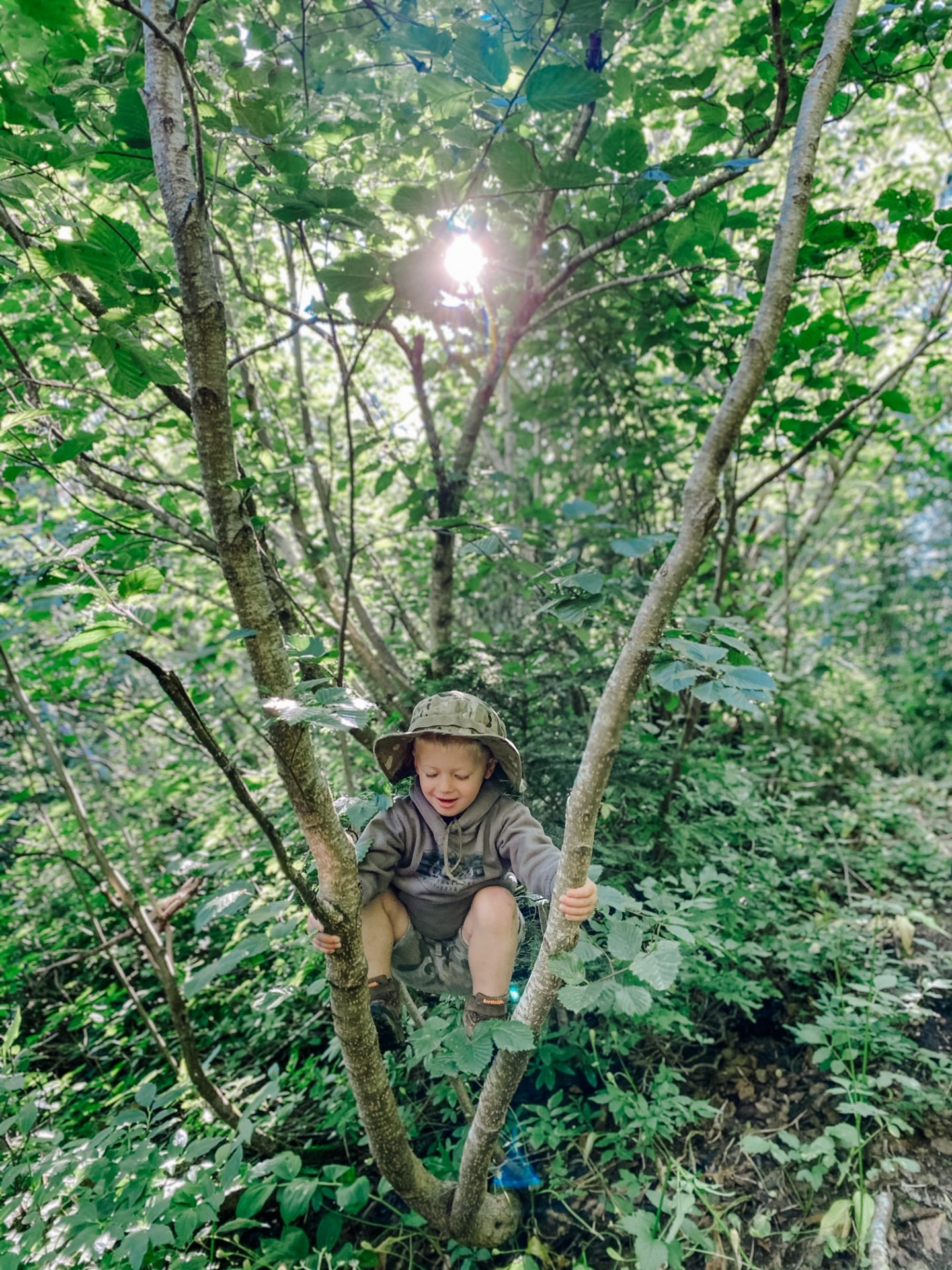 mt. rainier kid-friendly hikes