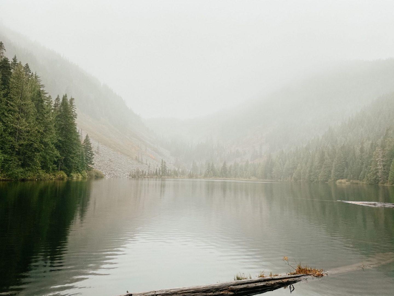 misty lake views