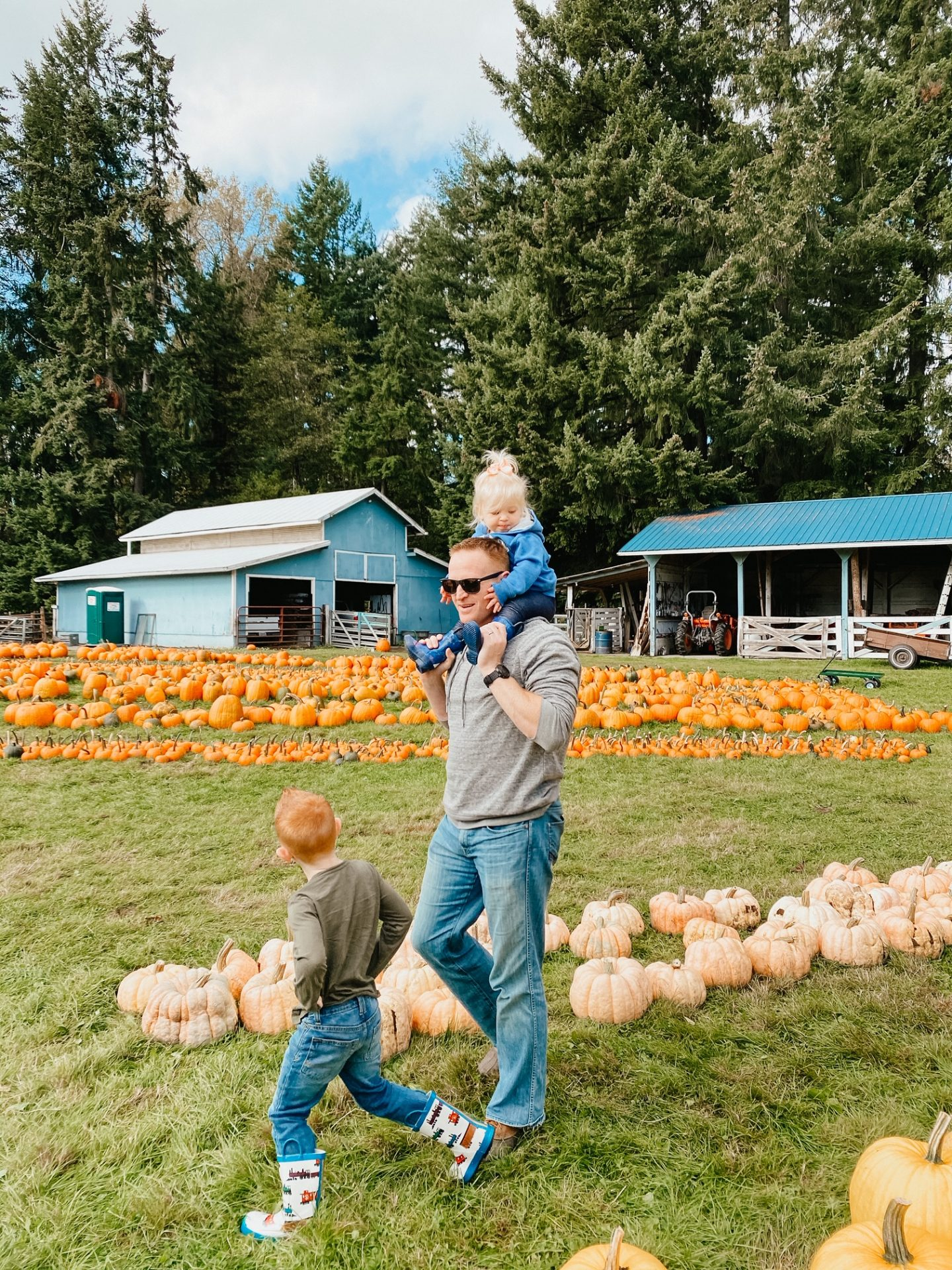pumpkin patches olympia