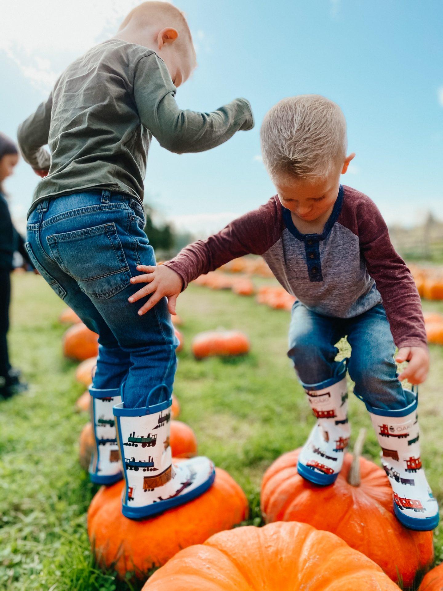 pumpkin picking jblm