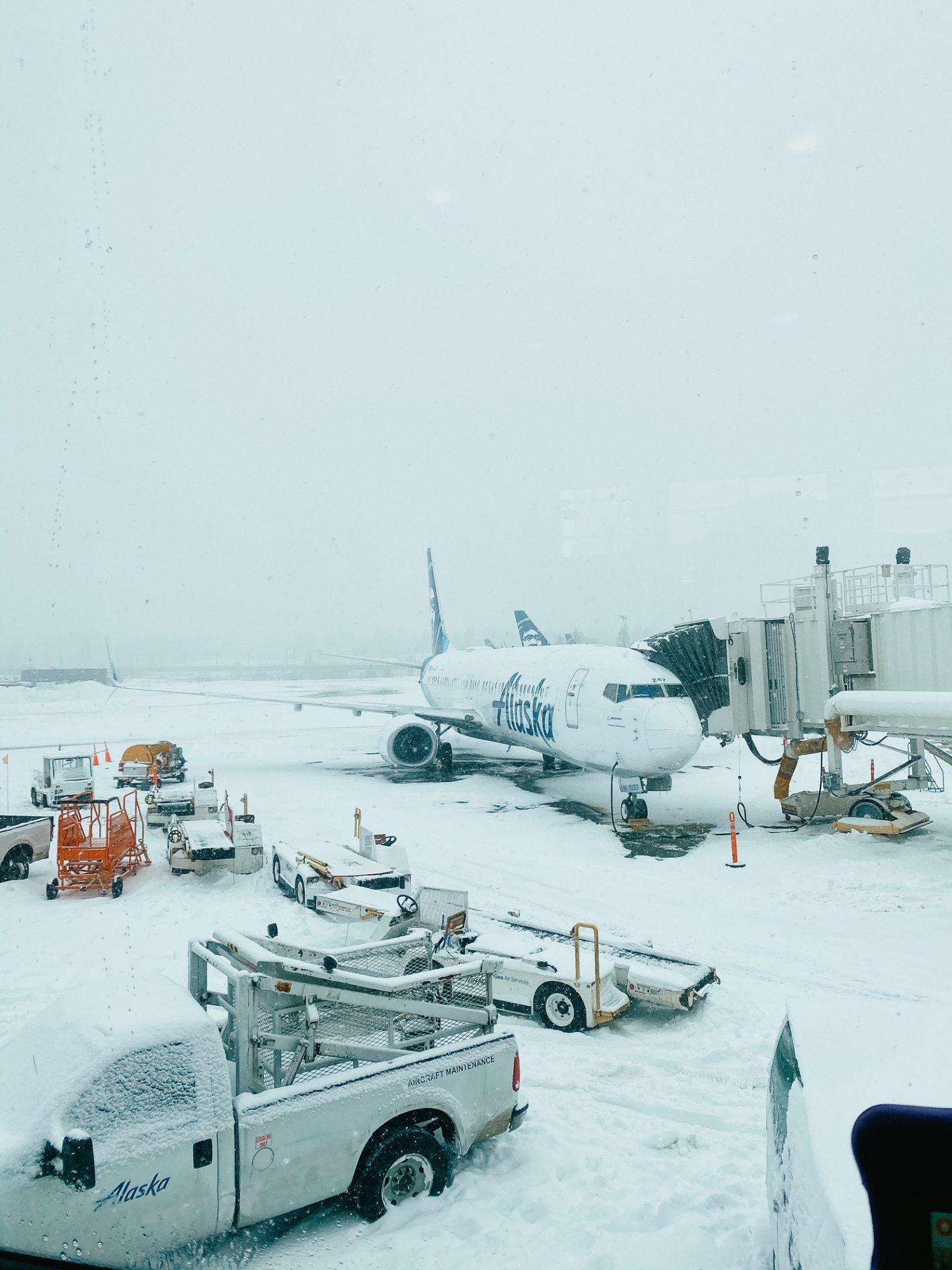 pnw canceled flights