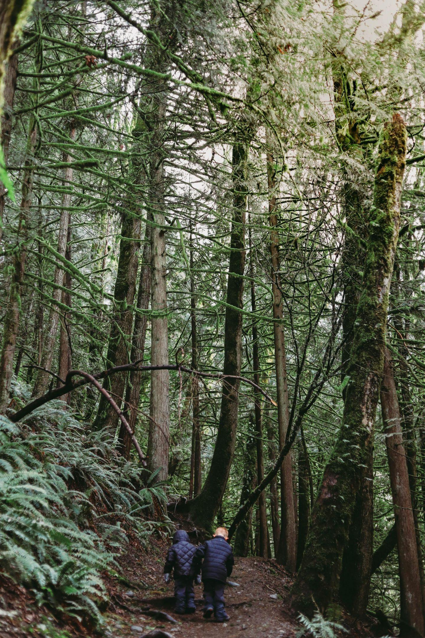 twin falls trail
