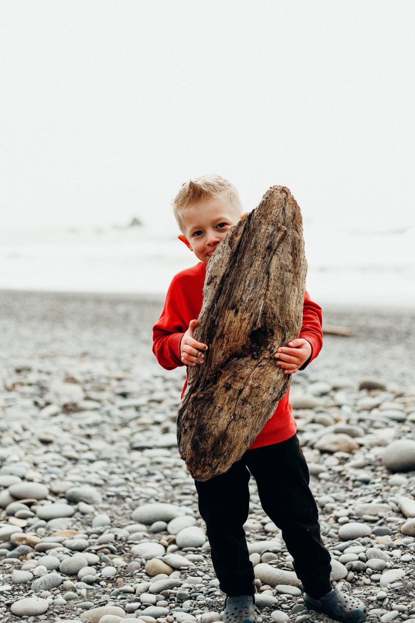 driftwood ruby beach