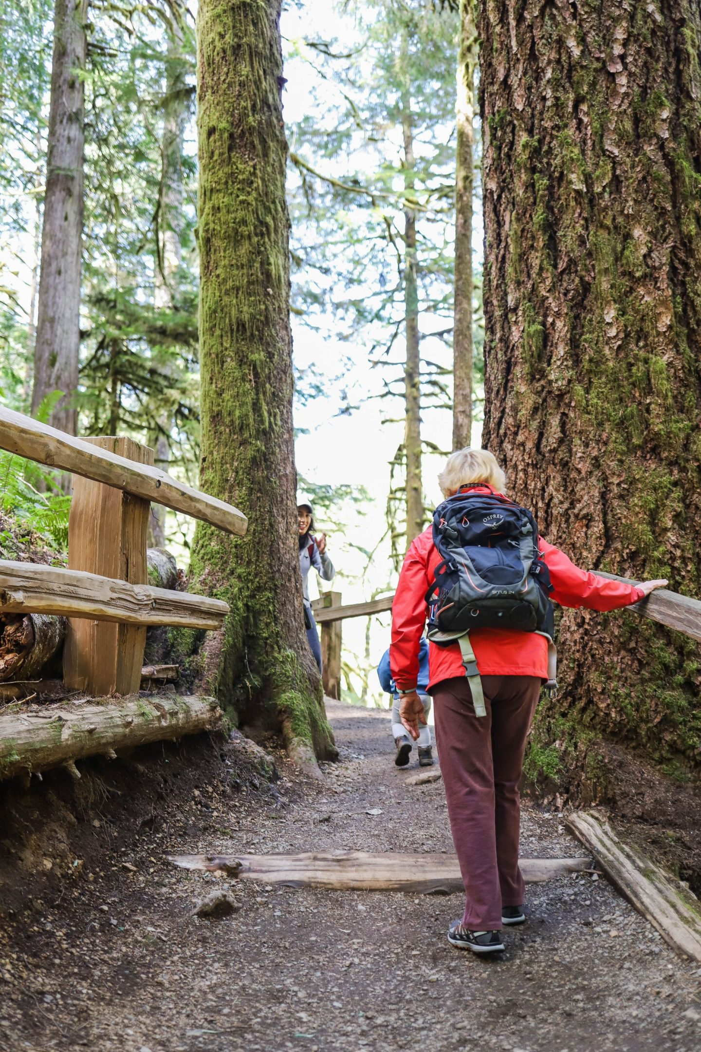 best hikes all ages olympic national park