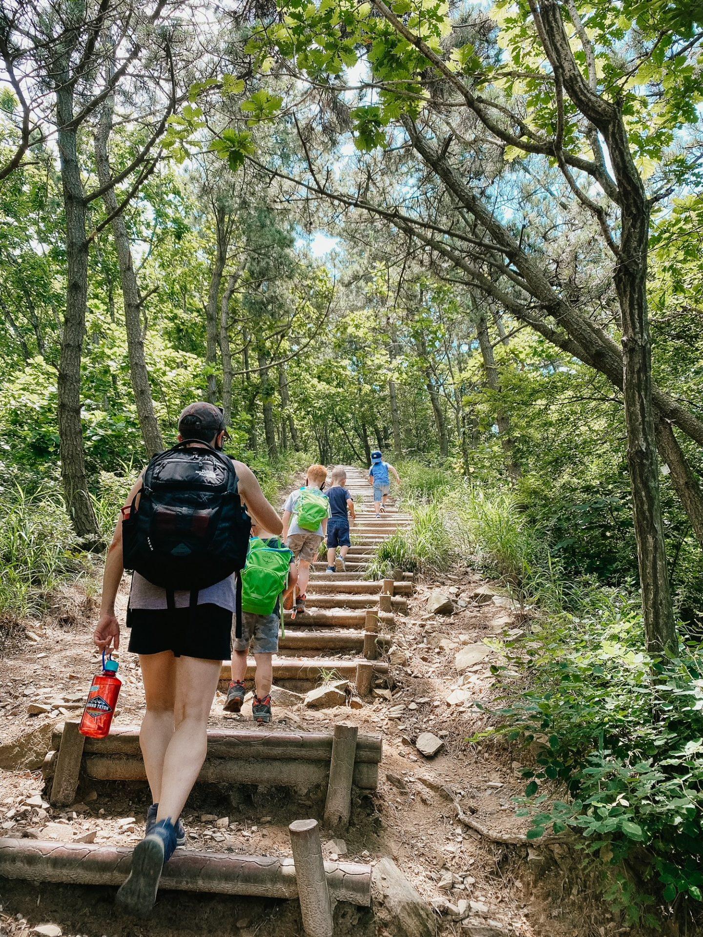 hiking elephant rock trail korea