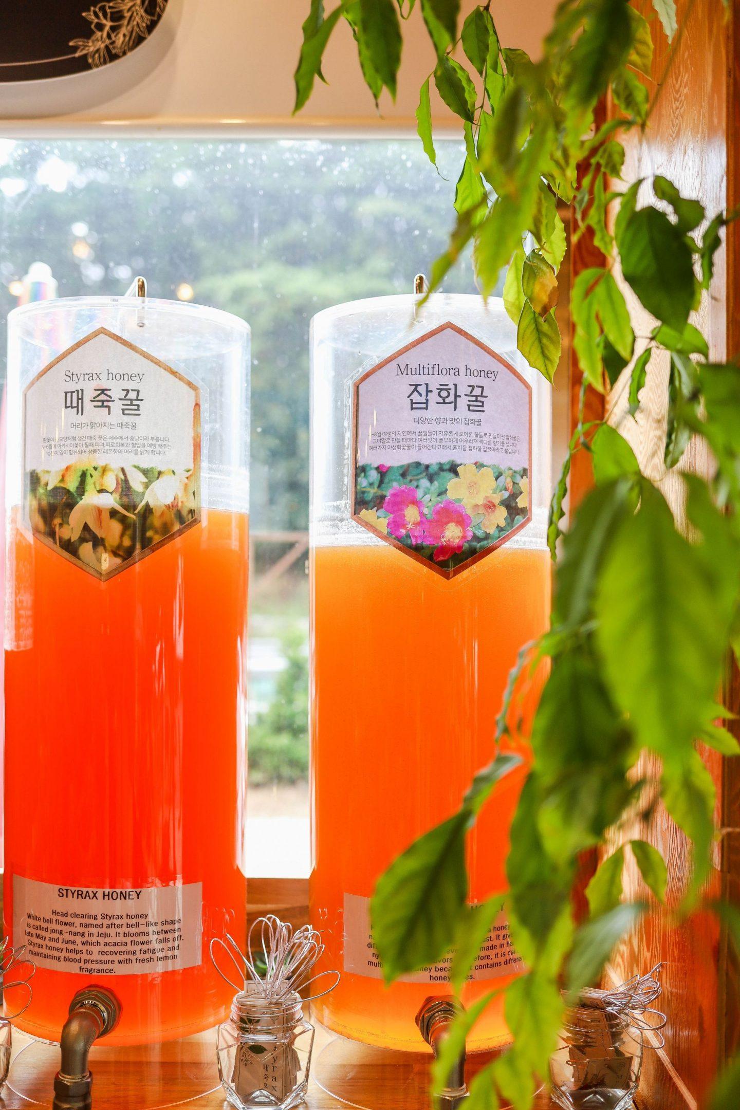 honey cafe korea