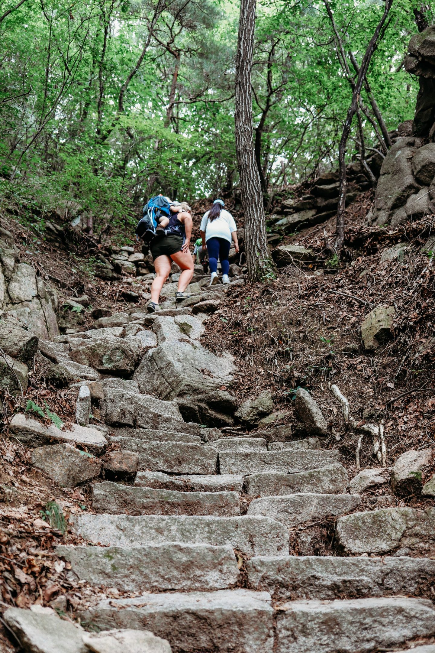 hiking mangwolsa temple trail